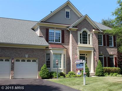 13699 BLACK SPRUCE WAY Chantilly, VA MLS# FX8593721