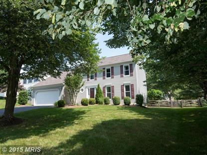 13130 THORNAPPLE PL Herndon, VA MLS# FX8655756