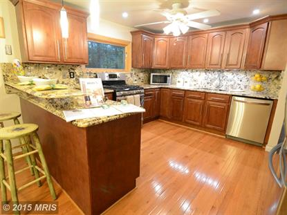 11572 SHADBUSH CT NW Reston, VA MLS# FX8746280