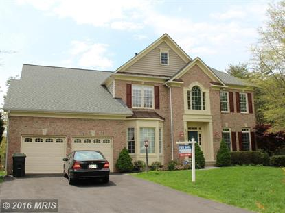 13699 BLACK SPRUCE WAY Chantilly, VA MLS# FX9584389