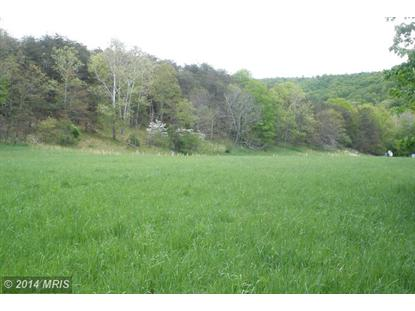UPPER SKAGGS RUN ROAD Baker, WV MLS# HD7642902