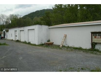 11725 NEELYTON RD Shade Gap, PA MLS# HU8348575