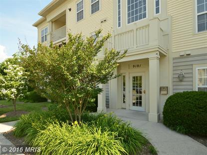 9101 GRACIOUS END CT #301 Columbia, MD MLS# HW9670569