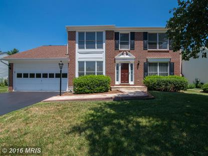 43513 GOLDEN MEADOW CIR Ashburn, VA MLS# LO9721816