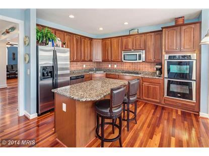 16507 STEERAGE CIR Woodbridge, VA MLS# PW8449464