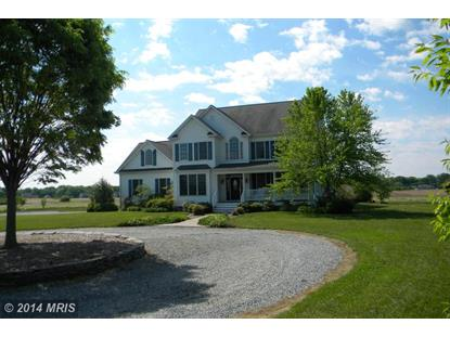 201 WATERFOWL ST Centreville, MD MLS# QA8363716