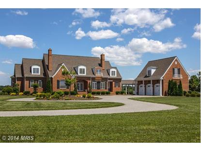 435 CINNAMON TEAL DR Centreville, MD MLS# QA8459561
