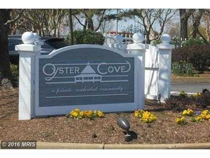 116 OYSTER COVE DR #1D Grasonville, MD MLS# QA9712500