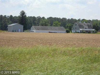31216 BRUCEVILLE RD Trappe, MD MLS# TA8222877