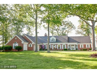 30360 CODS POINT RD Trappe, MD MLS# TA8354875