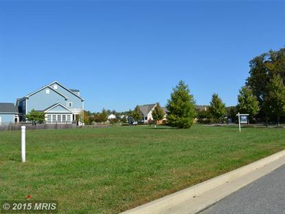 28218 LITTLE NECK WAY Easton, MD MLS# TA8733465