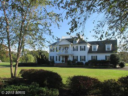 29635 PORPOISE CREEK RD Trappe, MD MLS# TA9500566