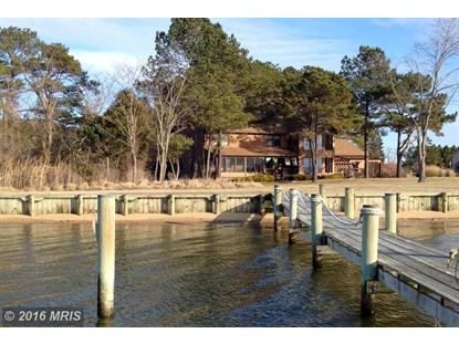 5176 BLACK WALNUT POINT RD Tilghman, MD MLS# TA9578888
