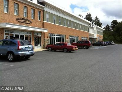650 CEDAR CREEK GRV #116 Winchester, VA MLS# WI8518795
