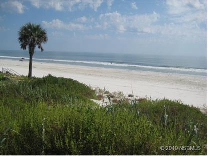 4627 E VAN KLEECK DR  New Smyrna Beach, FL MLS# 1021920