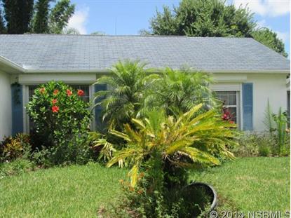 1867 Willow Oak Dr  Edgewater, FL 32141 MLS# 1022227