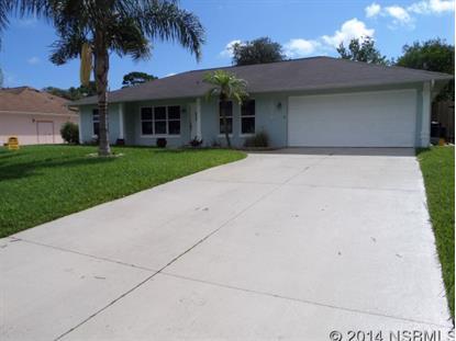 3029 Sabal Palm Dr  Edgewater, FL 32141 MLS# 1022997