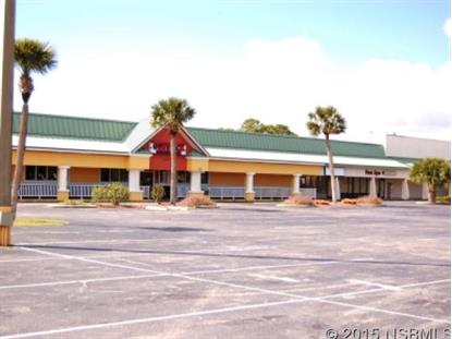 429 East 3rd Ave  New Smyrna Beach, FL MLS# 1023882