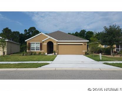 510 Safe Harbor Dr  Edgewater, FL 32141 MLS# 1028536