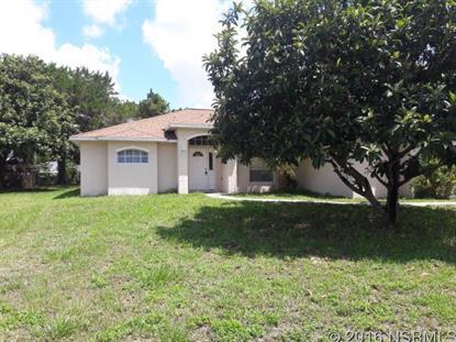 157 Douglas St  Edgewater, FL 32141 MLS# 1029044