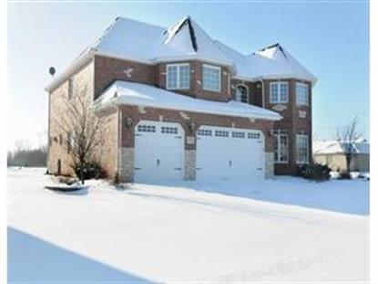 12217 Red Clover LN , Plainfield, IL