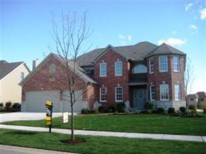 12923 Hawks Bill Court, Plainfield, IL