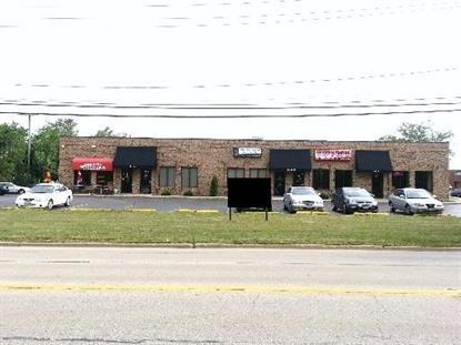 401 S IRMEN Drive Addison, IL MLS# 08113581