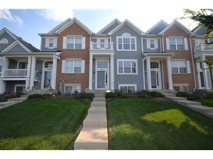 24451 JOHN ADAMS Drive, Plainfield, IL