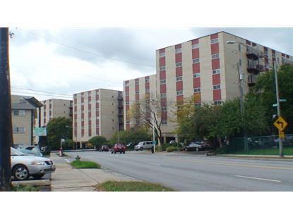 1013 S Des Plaines Avenue Forest Park, IL MLS# 08470500