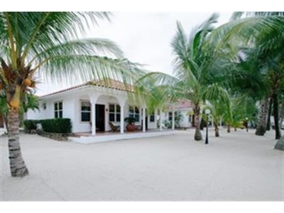 C111 Beach Front (Belize)  Lisle, IL MLS# 08491830