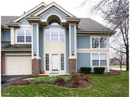 1191 TALBOTS Lane Elk Grove Village, IL MLS# 08538642