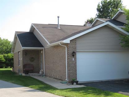5607 Von Avenue Monee, IL MLS# 08555213