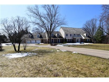 1864 PHEASANT RUN , Long Grove, IL