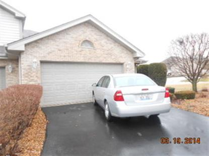 17407 Carlyle Court Tinley Park, IL MLS# 08569383