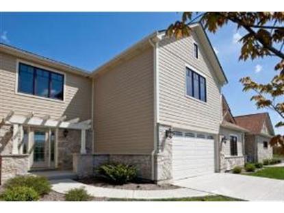 21353 N PRAIRIE Drive Frankfort, IL MLS# 08577628