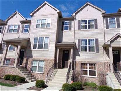 1244 Evergreen Avenue Des Plaines, IL MLS# 08592608