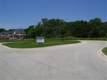 LOT 6 DEER POND Court St Charles, IL MLS# 08611302