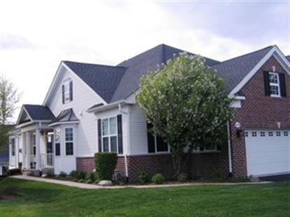 1030 RIVIERA Drive Elgin, IL MLS# 08618972