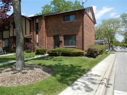 1S269 Michigan Avenue Villa Park, IL MLS# 08624495