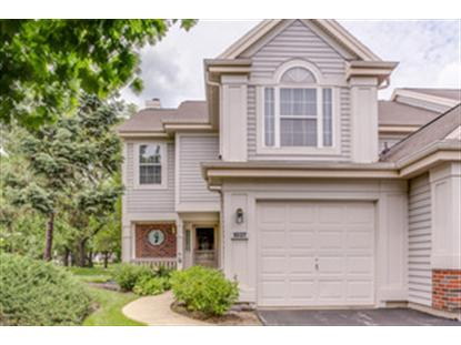 1037 Talbots Lane Elk Grove Village, IL MLS# 08628810