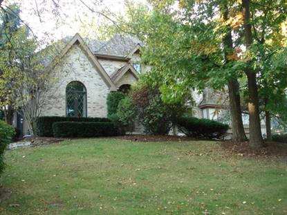 979 Baytree Drive Bartlett, IL MLS# 08633649