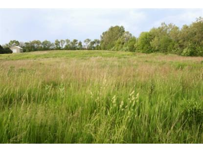 5 Acres Charles Road Woodstock, IL MLS# 08636723