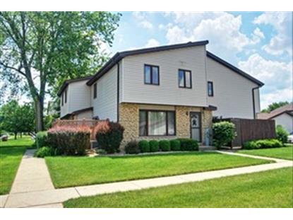 639 Northgate Road New Lenox, IL MLS# 08641168