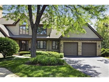 1000 Woodrush Lane Darien, IL MLS# 08641218