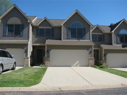 306 River Bluff Drive Carpentersville, IL MLS# 08644846