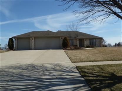3685 W Nettle Creek Drive Morris, IL MLS# 08649872