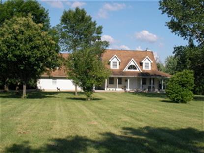 3485 Springcreek Drive Ladd, IL MLS# 08653644