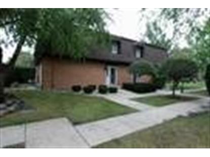 3244 Chestnut Drive Flossmoor, IL MLS# 08655329