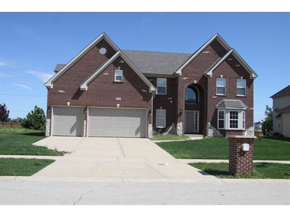 25742 Meadowland Circle Plainfield, IL 60585 MLS# 08659670
