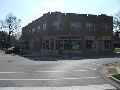 206 W Green Street Bensenville, IL MLS# 08660411